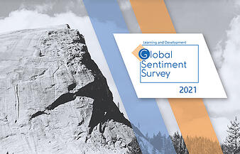 global-survey-2021